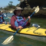 Shearwater Kayak Tours